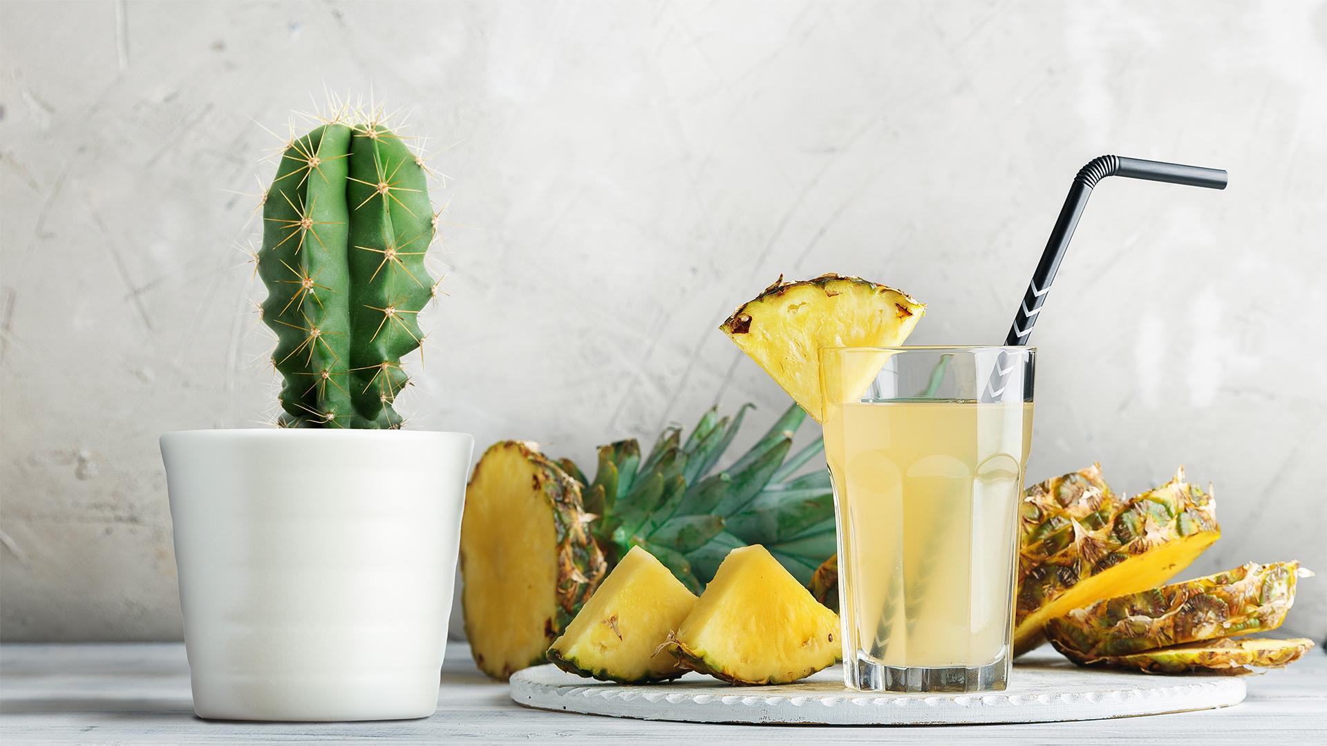 Flowertown pineapple sativa cannabis