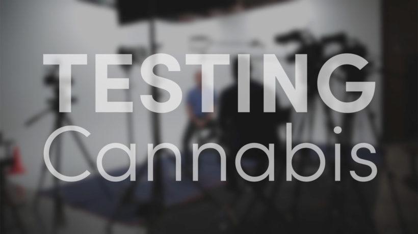 Flowertown speaks on tested cannabis