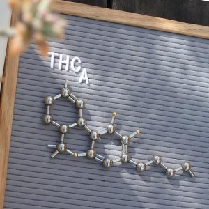 Flowertown Cannabis 101 Who else is in the cannabinoid family