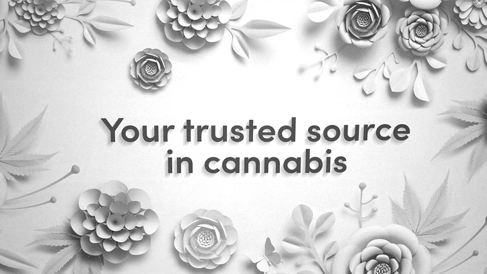 Flowertown-The-5-biggest-takeaways-from-the-CBD-Help-or-Hype-panel