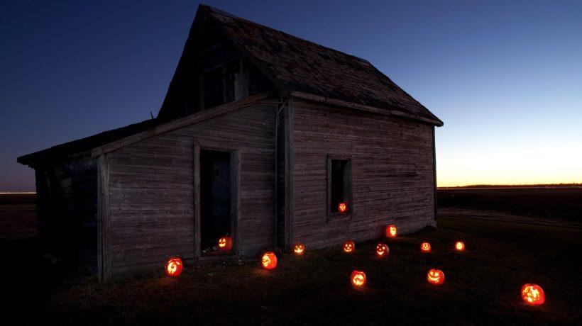 Flowertown Favorites: Spooky Halloween Edition