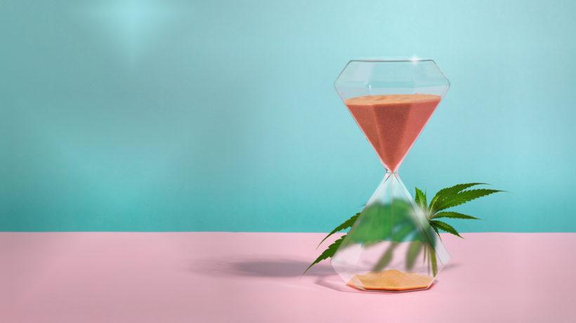 Flowertown-Cannabis-Timeline-Decade-History-News-Masthead